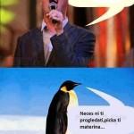 Saša i pingvin
