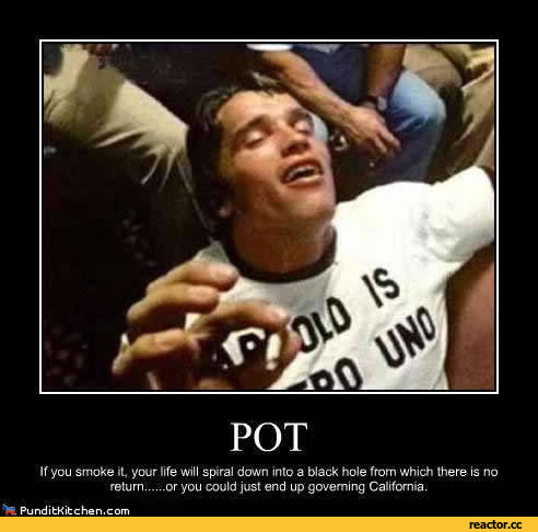 funny-pictures-stoner-humor-auto-441658
